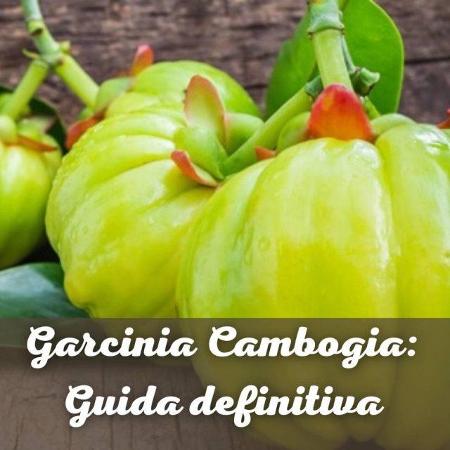 Garcinia Cambogia: guida definitiva e sempre aggiornata