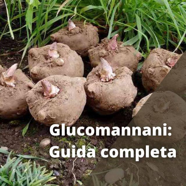 glucomannani: guida completa